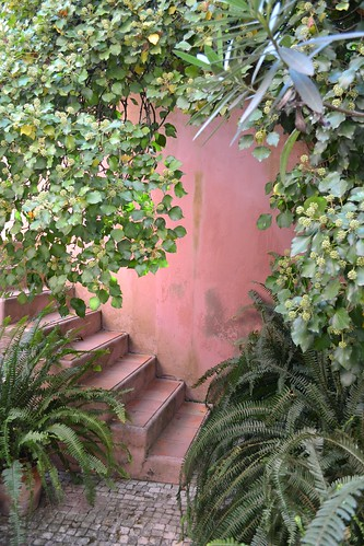 pink house stairs