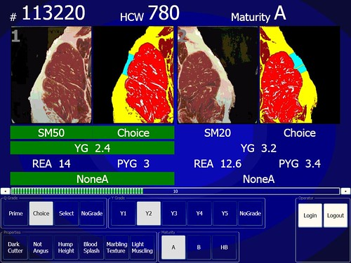 A screenshot from the electronic grading system showing USDA Choice, Yield Grade 2 beef. The left is the natural color view of the cut; the right is the instrument enhanced view that details the amount of marbling, size, and fat thickness. Beef grading is a complex and detailed process, requiring graders to think and calculate quickly with great accuracy.  Using technology to compliment and supplement the onsite human graders generates an efficient and more precise process.
