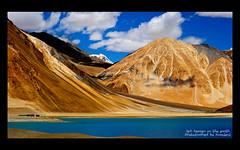 LEH24 (Kuayjeng) Tags: leh ladakh