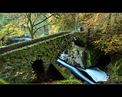 Hermitage Bridge Downriver (angus clyne) Tags: door bridge light red orange cliff tree green fall water pool leaves stone wall river dark carpet foot for scotland moss lon