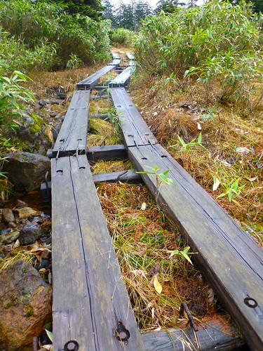 muddy trail up to Sugatami-ike, Japan