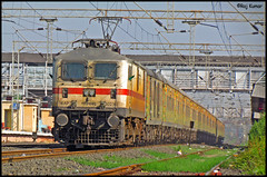 DEE-YPR Duronto with GZB P7 (Raj Kumar (The Rail Enthusiast)) Tags: new canon switzerland delhi indian express railways raj abb banglore bhopal kumar 30236 duronto wap7 yeshvantpur habibganj misrod sx30is