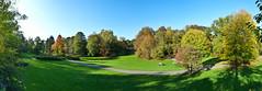 Rombergpark Herbst 2011 (Dirk65) Tags: park urban germany deutschland europa laub herbst natur pflanze wiese grn ruhrgebiet baum dortmund nordrheinwestfalen metropole revier grnflche altweibersommer naherholung rurpott ausflugziel nrwwestfalen rombergark