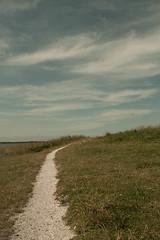 _MG_1550 (danieltreek) Tags: sun holiday holland beach nature water netherlands strand landscape see wasser sommer urlaub natur landschaft sonne nordsee niederlande northsee erholung