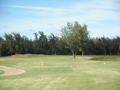 Turtle Bay Colf Course 317