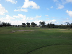 Turtle Bay Colf Course 309