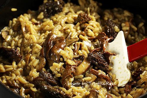 野菇燉飯-111030