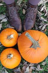 Vintage boots and pumpkins