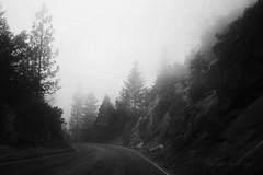 Sequoia National park (Ole Lukoie) Tags: california ca trees bw usa snow mountains fog blackwhite sequoia sequoianationalpark