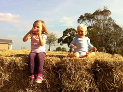 Phoebe and William atop the bale pile