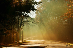 Sunday morning drive (Dennis Cluth) Tags: mist art nikon sunbeams d90