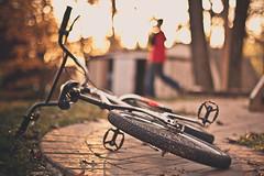 Golden ride (Jaime973) Tags: november bike canon 50mm raw ride day5 gratitude 30days gratefulforlight cararosepreset gratefulforjustonemorehourofplaytime lovewatchingthekiddossoakupeverylastminuteoftheday