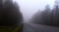 Photo 2011-11-03 15 32 40 (TinaOo) Tags: cars fog dimma backlights bilar disapearing bakljus försvinner