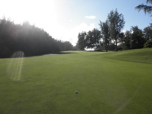 Turtle Bay Colf Course 369b