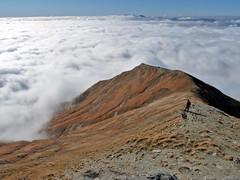 Escursionismo Laga - Cima Lepri da Macchie Piane per il Tracciolino di Annibale