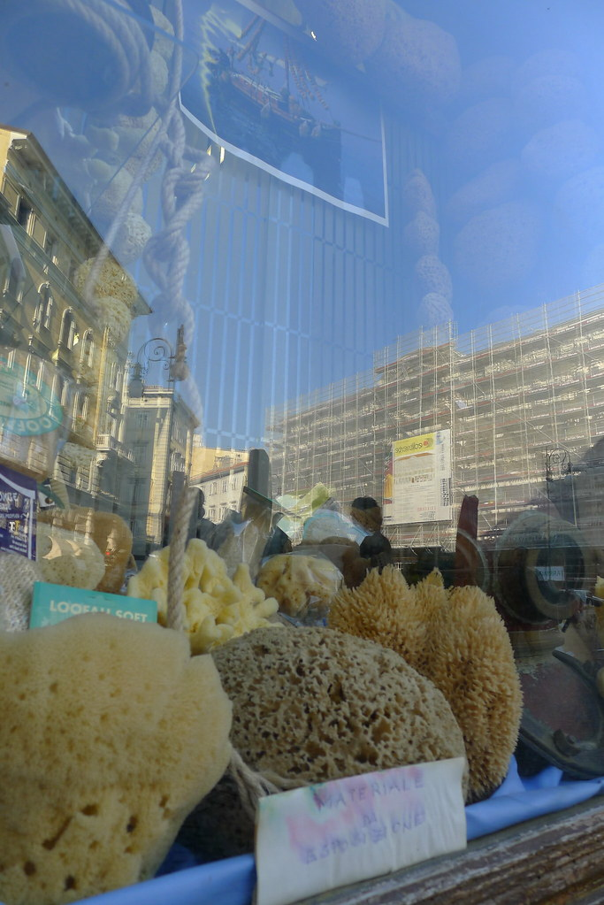 Sea sponges and diving helmets