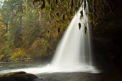 upper-butte-creek-falls2 (greygirl25) Tags: oregon pacificnorthwest cascademountains upperbuttecreekfalls