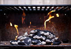 Combustion (Western Maryland Photography) Tags: cooking fire grill burning flame charcoal heat combustion briquettes canonef50mmf18ii canont1i