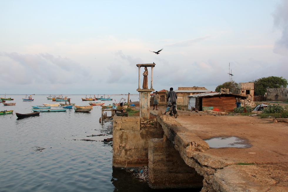 Fish Market, Jaffna, Sri Lanka