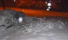 boughs fallen on the car (dmixo6) Tags: trees winter snow nature beauty sly muskoka gravenhurst dugg dmixo6