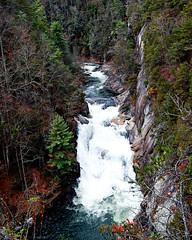Tallulah Falls, Georgia (Bhamgal) Tags: camping trees fall water rock georgia waterfall dam tallulahgorge tallulahfalls