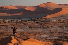 Dunes of Sesriem-Sossusvlei NP | 17