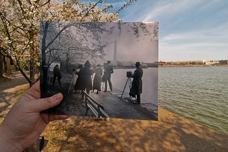Looking Into the Past: Cherry Blossom Photographers at the Tidal Basin
