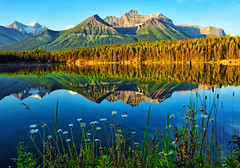 Early Morning Light at Herbert Lake (Jeff Clow) Tags: mountain lake nature landscape albertacanada banffnationalpark icefieldsparkway herbertlake dcptbanff