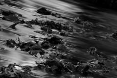 (Florence Beasley) Tags: white black water rain river grey nikon long exposure pebbles litter filter nd mm tamron twigs 08 18270 d5000