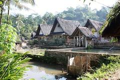 DSC00049/Java/ Kampung Naga/Pounds and commodities (dany13) Tags: java traditionalvillage kampungnaga