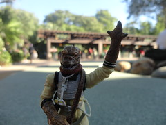 Bossk at animal kingdom (Blue Troll) Tags: world blue fun outside action anal parrot kingdom disney figure eggs troll lizards lots scrambled ig88 bossk