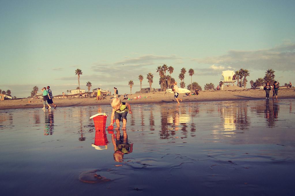 beachvaca9