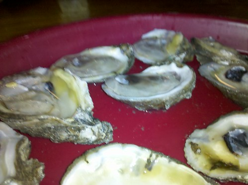 Tracy's oysters
