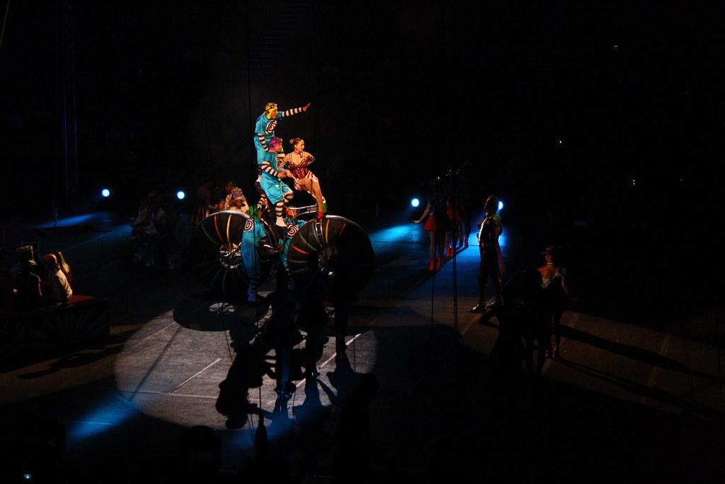 circus 1 304