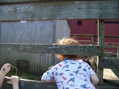 103_5236 (blairmarc) Tags: county island suffolk long class homeschool sweetbriar smithtown