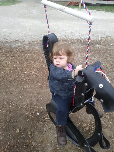 Tire Swing Horse