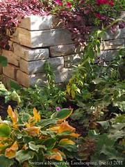 a cedar arbor and natural stone work...  By Award Winning Minnesota Landscape Designer Glenn! Switzer (Switzer's Nursery & Landscaping) Tags: minnesota stone design natural landscaping stonework glenn steps patio cedar handcrafted stonewall northfield interlocking pergola stonesteps paver handset pavers naturalstone waller switzers arbour switzer drystack landscapedesign designbuild hardscape hardscaping customdesigned glennswitzer icpi mnla patiodesign pergoladesign switzersnursery landscapedesigns theartoflandscapedesign switzersnurserylandscaping arbourdesign artoflandscapedesign minnesotanurserylandscapeassociation