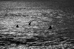 Contraluz (Rubn Gonzalo Galindo) Tags: contraluz surf asturias salinas sanjuan aviles castrillon
