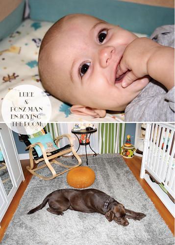 Lukes-Nursery-12