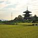 Hokiji (法起寺)