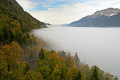 Autumn fog over the Lake of Brienz (Rosarian49) Tags: trees mountains alps fog interlaken indiansummer berneroberland giessbach lakeofbrienz cantonofberne rosarian49 grandhotelofgiessbach