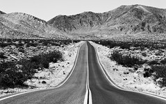 **LET'S SHOOT DEATH VALLEY** (Thomas Hawk) Tags: california bw usa unitedstates desert 10 unitedstatesofamerica fav20 deathvalley fav30 deathvalleynationalpark fav10 fav25 superfave natureshand