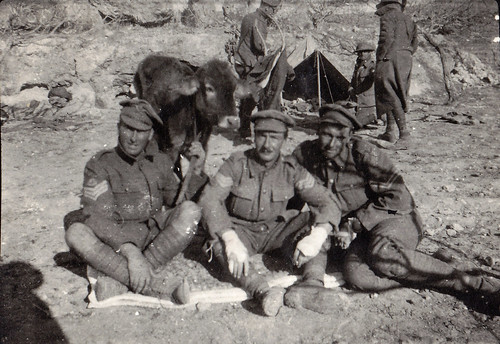 British soldiers with a cow. Palestine. WW1.