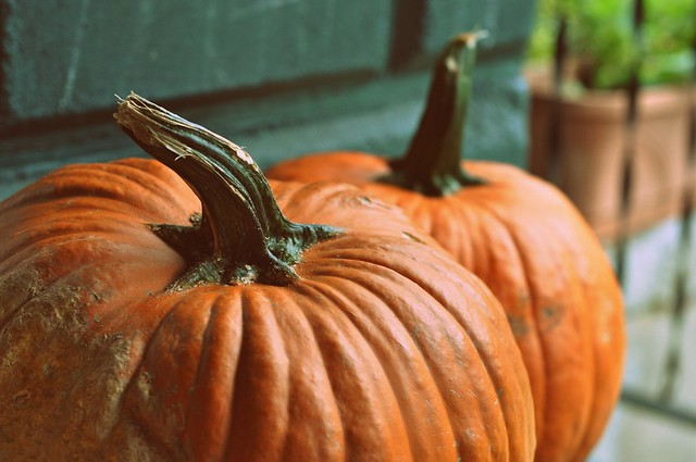 to do list: carve pumpkins.