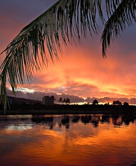 ~~A SpeCiAL MoRniNG #2~~ (TravelsThruTheUniverse) Tags: waikikioahu oahuhawaii hawaiisunset waikikisunset honoluluoahu oahusunset flickrstruereflection1 alamoanabayoahu