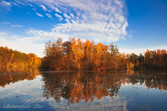 autumn colors [explore #15] (Mi Ko) Tags: autumn trees lake reflection tree water colors reflections germany bavaria see nikon flickr herbst schweinfurt reflektionen