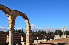 Anjar, Umayyad city, al-Walid I, 705-15, along the decumanus maximus (17) (Prof. Mortel) Tags: lebanon umayyad anjar