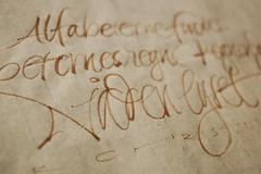 Alfabeternes Regn detall (Oriol Mir Genovart) Tags: calligraphy oriol mir caligrafa calligraphie kalligrafi calligrafia