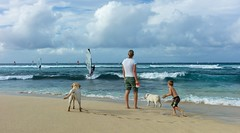 Beach Landing (Thncher Photography) Tags: ocean leica beach hawaii sand waves rangefinder maui windsurfing fullframe fx m9 hookipabeach summicron35mmasph leicam9 agm9