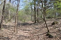 Ha Ha Tonka State Park (Adventurer Dustin Holmes) Tags: statepark forest outdoors woods hiking path trails trail missouri ozarks stateparks hahatonka camdencounty